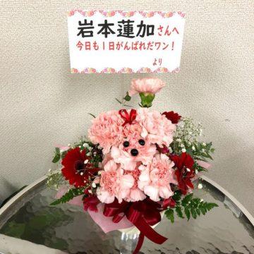 乃木坂46全国握手会祝い花(フラワーアレンジメント・バルーンフラワーアレンジ・花束)